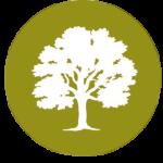 Barratt_logo_clipped_rev_1